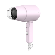 WHD-P06 (Hair Dryer)